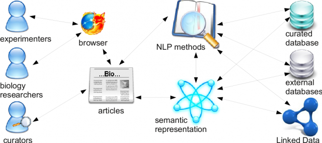 Integrating semantic support in curation, analysis and retrieval